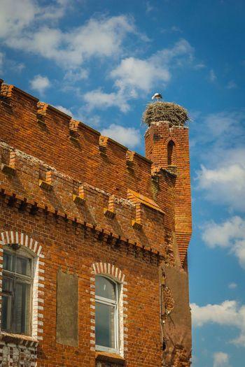 Architecture Outdoors Sky Stork Nest Stork, Castle