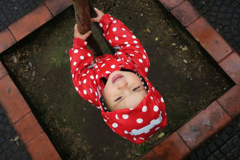 High Angle View Of Girl In Red Raincoat Holding Tree Trunk During Rainy Season
