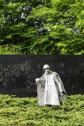 Koren War memorial in Washington DC... Day Grass Green Green Color Greenery Growth Koren Koren War Memorial Nature Outdoors Soilder Soilders Statue Statue Statues Tree Tree Trees War War Memorial Washington Washington DC Washington Memorial Washington, D. C. WashingtonDC