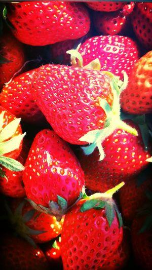 Strawberry picking !!! Fresh Produce Enjoying The Sun Taking Photos Fruitporn