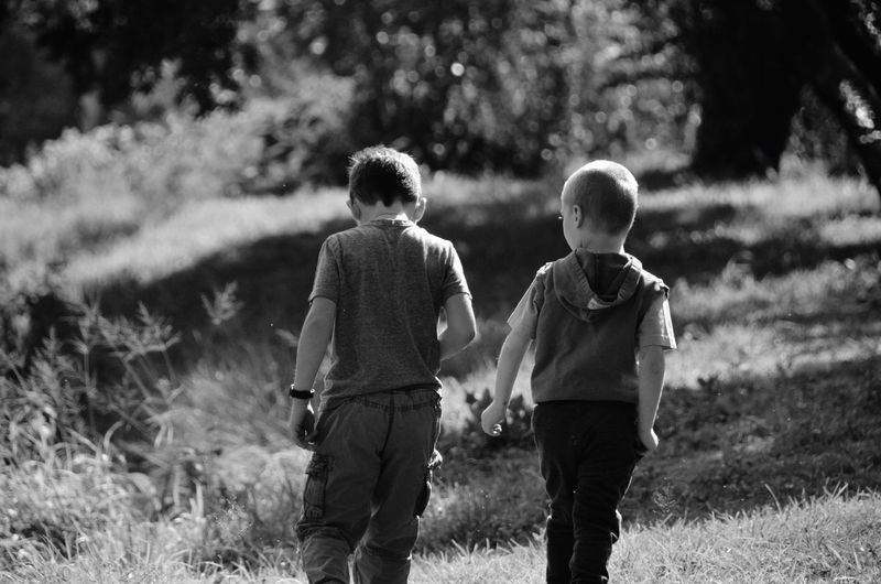 Brothers in arms. There just ain't anything sweeter Two People Men Rear View Child Real People Childhood Plant Love Bonding Togetherness Males  Family Boys