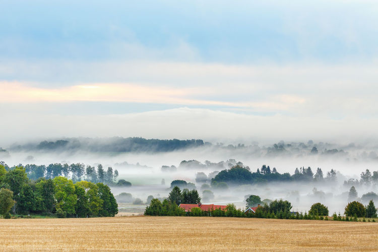 Countryside landscape view with morning fog