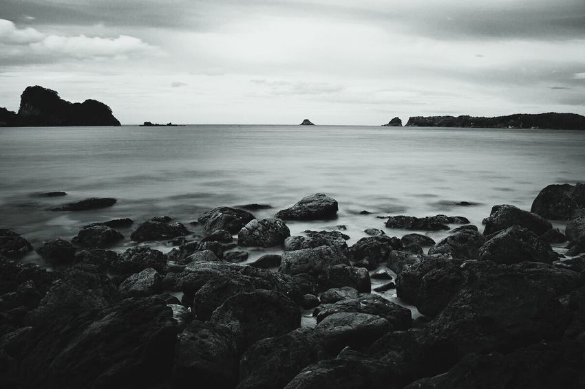 Black And White Nature Seaside Travel cathedral Cove - New Zealand