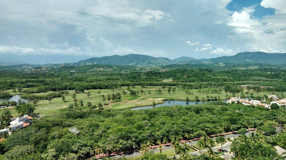 EyeEm Selects Ixtapa Zihuatanejo, Gro. Nature No People Green Color