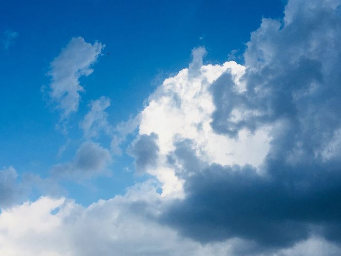 Sky Cloud - Sky Sky Low Angle View Beauty In Nature Blue Nature Tranquility Scenics - Nature Tranquil Scene No People Day Idyllic Sunlight Outdoors White Color Backgrounds Cloudscape Softness Fluffy Meteorology