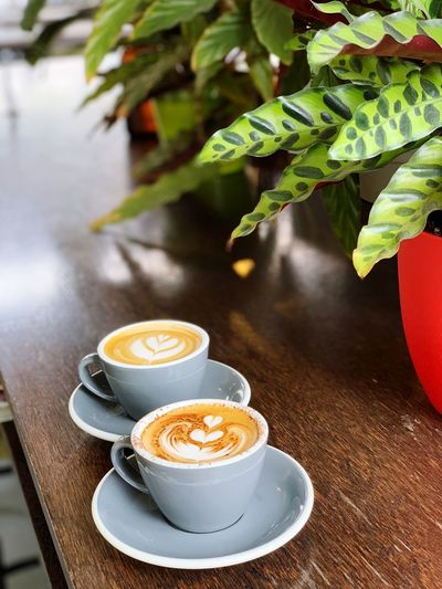 Coffee for you? Coffee Dunedin New Zealand Coffee Cup Coffee - Drink Table Hot Drink Leaf Plant Part Plant Froth Art Drink Refreshment