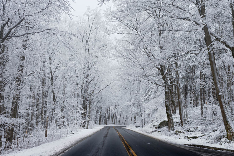 Road amidst snow covered trees during winter