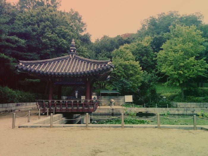 Taking Photos Landscape Architecture South Korea