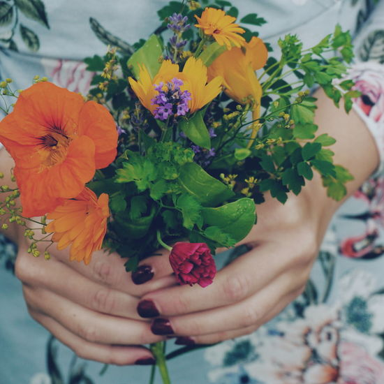 female hands holding a bouquet of garden flowers Bouquet Bouquet Of Flowers Garden Flowers Human Body Part Human Hand Hands Females Woman Floral Pattern Summer Summertime Summer Views Human Hand Flower Flower Head Bouquet Multi Colored Women Holding Summer Flower Arrangement Leaf In Bloom Body Part Blossom Botany Blooming