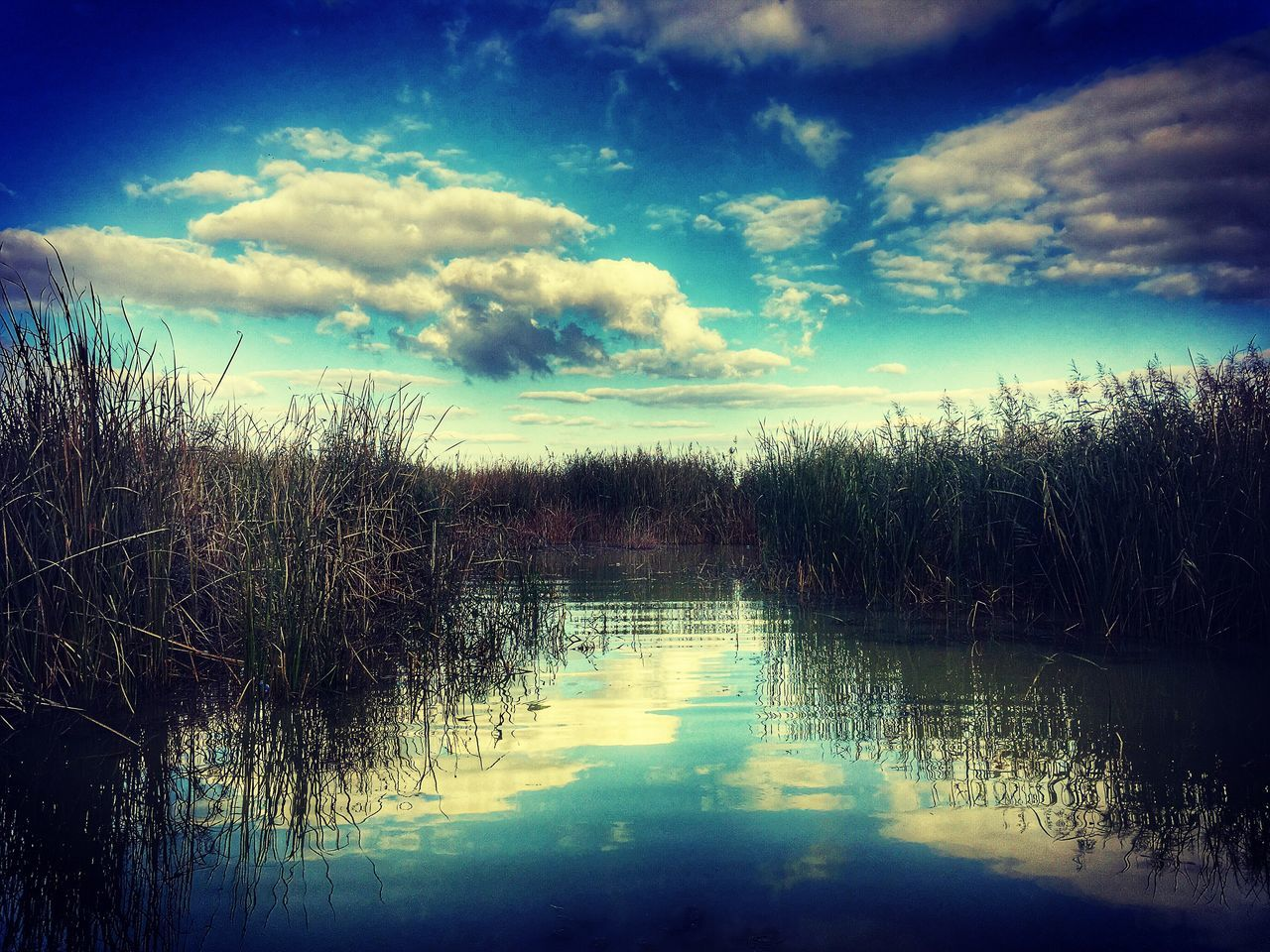 tranquil scene, tranquility, water, sky, reflection, cloud - sky, nature, scenics, beauty in nature, no people, outdoors, idyllic, lake, day, tree, grass