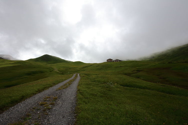 Country Road Along Grassy Landscape