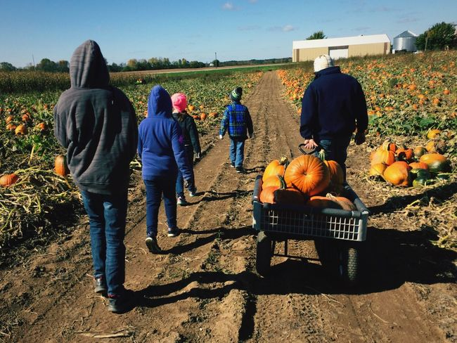 Fall time and family Real People Outdoors Kids Being Kids Wisconsin Life Outdoors Photograpghy  Family Matters Pumpkin Pumkin Season Pumpkin Patch Uncles Fall Time Pumpkinpatch Kids