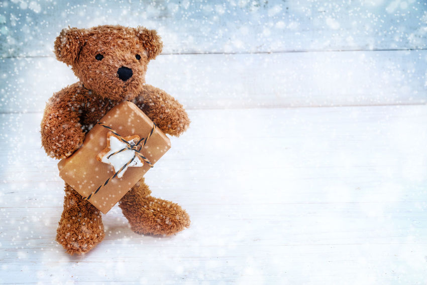 little teddy bear with a Christmas gift standing on a white blue painted wooden background in the snow, copy space Snowing Bear Holiday Love New Year Winter Background Blue Brown Childhood Chritsmas Day Gift Indoors  No People Present Star Stuffed Stuffed Toy Teddy Bear Toy White Wooden