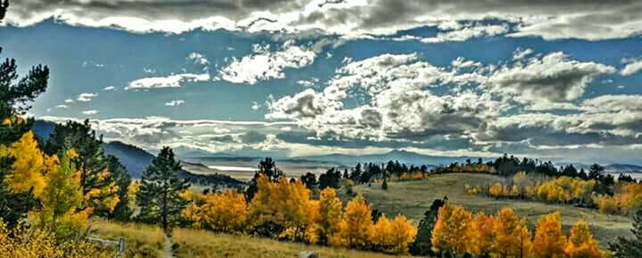 Check This Out Colorado Wilkersonpass Mountain View Fall Colors Cloudy