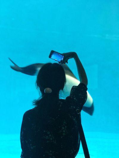 Woman photographing fish in aquarium
