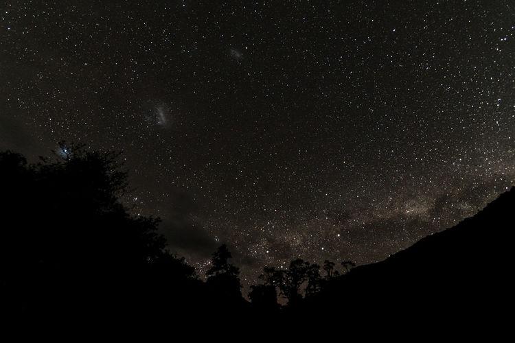 Midnight fiordland national park gunn camp - milkyway - Star - Space Night Astronomy Beauty In Nature Star Field Galaxy Scenics Outdoors Constellation Nature Sky Space And Astronomy Tree Milky Way Stars Nightphotography Travel