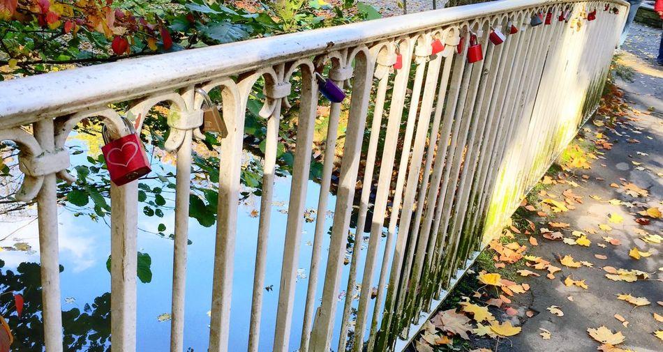 Herz Schlösser Fall Beauty Taking Photos Haert Fall Colors I Love It ❤