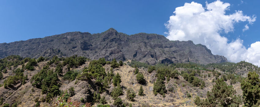Panaromic view of the volcanic landscape at Barranco de las Augustias, La Palma, Canary Islands, Spain Mountain Beauty In Nature Scenics - Nature Nature Plant Tranquil Scene Environment Non-urban Scene Tranquility Tree Cloud - Sky Mountain Range Rock Landscape No People Geology Rock Formation Formation Mountain Peak El Paso Barranco De Las Angustias Panaromic La Palma, Canarias Canary Islands Ravine