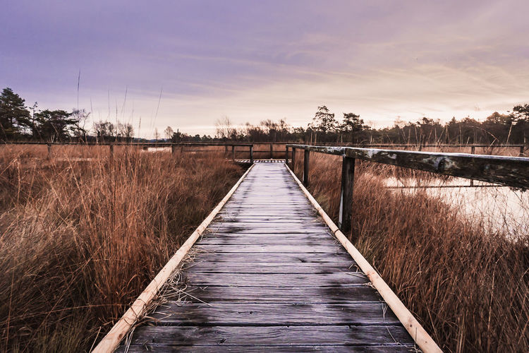 the way over the moor Landscape_Collection Landschaftsbilder Lüneburger Heide Architecture Beauty In Nature Bridge - Man Made Structure Built Structure Day Footbridge Germany Landscape_photography Landscapes Nature No People Outdoors River Scenics Sky Sunset The Way Forward Tranquil Scene Tranquility Tree Water Wood Paneling This Is Masculinity EyeEmNewHere EyeEmNewHere