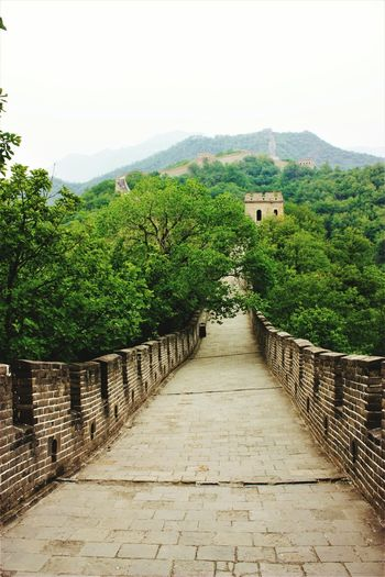 I took this Picture in Beijing ( China ) in June 2016. Nature Landscape The Way Forward No People Day Tree History Representing Beijing, China Beijing Chinese Wall