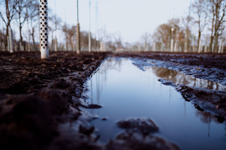 IN THE FIELDS (muddy ways) Water Nature Sky Reflection Tree No People Tranquility Day Plant Tranquil Scene Land Scenics - Nature Non-urban Scene Lake Winter Outdoors Selective Focus Bare Tree Beauty In Nature Surface Level Fujifilm