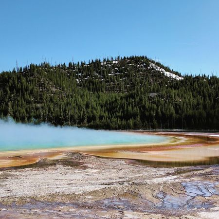 Pinaceae Pine Tree Lake Water Tree No People Landscape Nature Travel Destinations Hot Spring Geyser Scenics Travel Tourism Beauty In Nature Forest Mountain Day Outdoors Tranquility