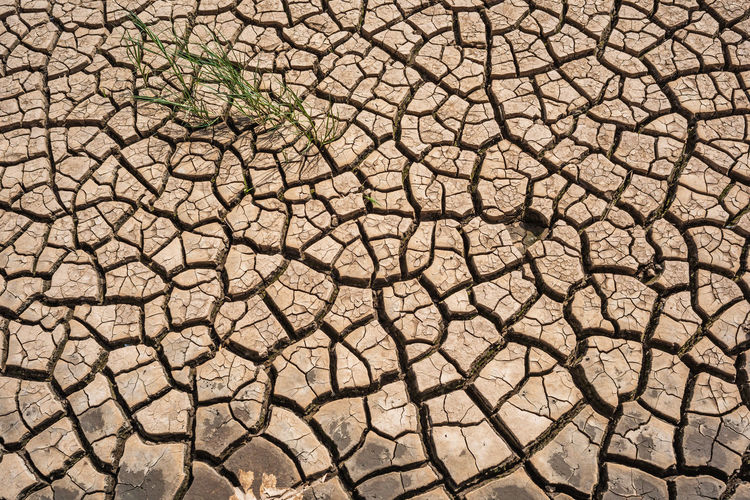 Drought Drought Drought And Floods Climate Climate Change Climate Change(global Warming) Pattern Cracked Dry No People Land Environment Nature Arid Climate Textured  Barren Mud Outdoors