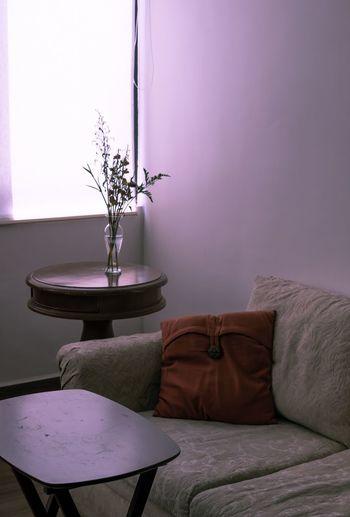 Light Modern