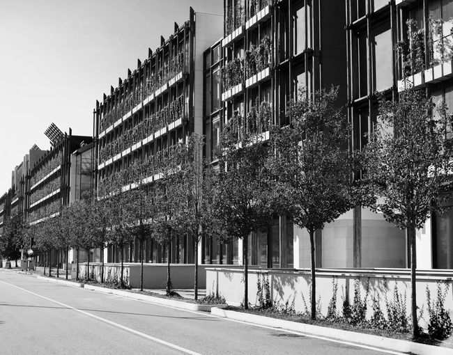 Architecture Building Building Exterior Built Structure City City Life Clear Sky Day Façade Growing In A Row Long Monochrome Photography Monocrome Design Black And White No People Office Building Outdoors Road Street The Way Forward Window