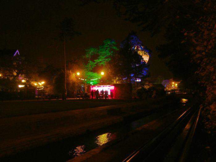 Bournemouth Gardens Lights Balloon Bournemouth Balloon Illuminated Night Outdoors Tree