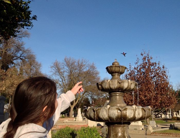 Close-up of girl pointing at bird flying against sky