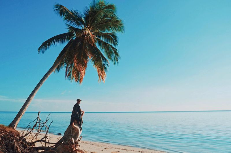 Rilex time Sea Sky Water Tree Beach Beauty In Nature Horizon Over Water Blue No People Tropical Climate Clear Sky Tranquility Scenics - Nature Nature Plant Palm Tree Tree Trunk Land Tranquil Scene Horizon First Eyeem Photo