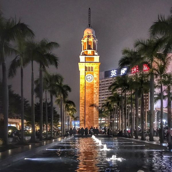 Illuminated Palm Tree Architecture Tower Built Structure Night Tree Building Exterior Clock Tower Sky Outdoors Bell Tower Clock No People City Tsim Sha Tsui 尖沙咀 Tsim Sha Tsui Clock Tower Tsim