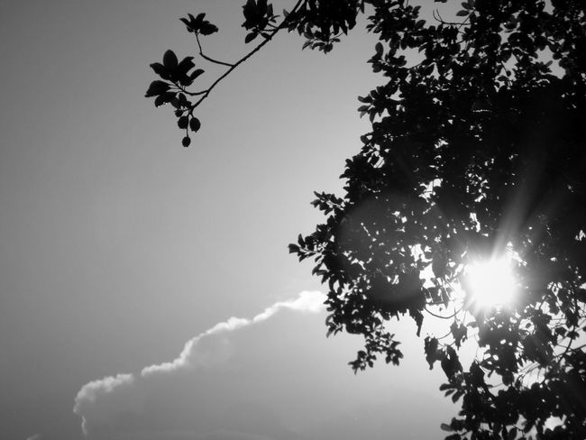 rain rain go away Monochrome Photography EyeEm Nature Lover Water Reflection Light And Shadow Abstract Hello World Getting Inspired Clouds And Sky Gift By Nature Black And White Waterdrops Nature