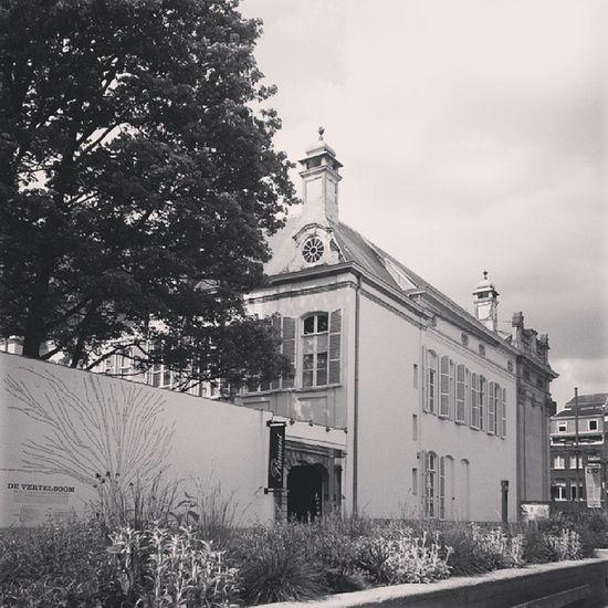 Vreugdeboom Meir Antwerpen