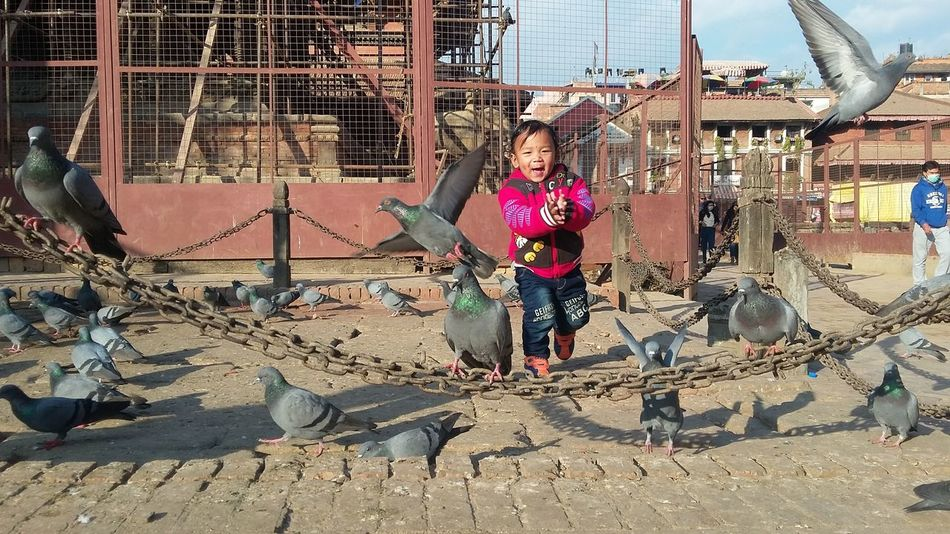 Let them be little and enjoy every moment. Child Childhood Birds Pigeons Playing With Birds Joy Of Life Happıness Outdoors Day Street EyeEm Gallery Travel Connecting With Little Hearts