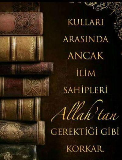 Sozler Nasihat Ders Allah Anlamli Anlamlisozler Yasam Yasamak Korku Ancak