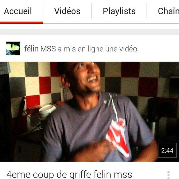 4eme coup de griffe Mss Félin  Freestyle Cuisine Tuconnaislebye 91 Petitfrere Tlt Jefilme