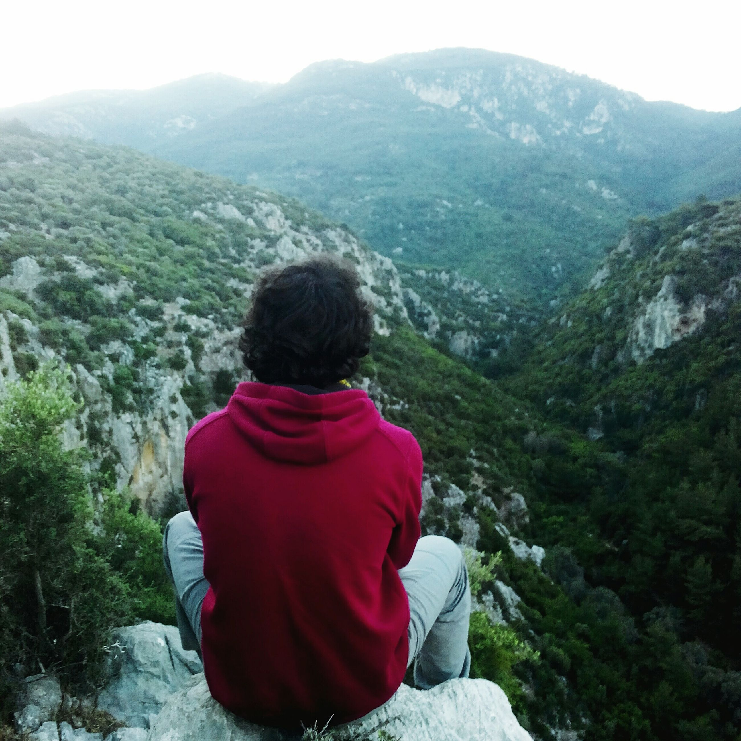 rear view, mountain, casual clothing, lifestyles, leisure activity, tranquility, beauty in nature, tranquil scene, nature, scenics, standing, landscape, tree, three quarter length, waist up, person, looking at view, non-urban scene