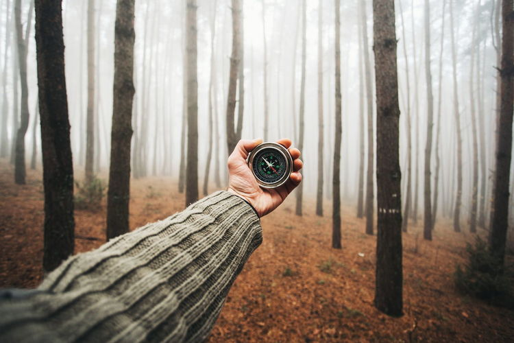 Exploring Nature Tree Adult Adults Only Adventure Camera - Photographic Equipment Close-up Compass Fog Forest Forest Photography Holding Human Hand Mist Nature One Man Only One Person Outdoors Real People Survival Tree Tree Trunk WoodLand Young Adult Fresh On Market 2017
