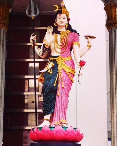 Godess Half Half Face Hindu