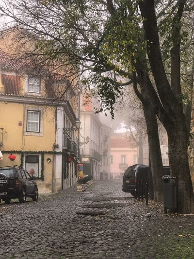 Misty morning in Lisbon Cobblestone Europe Quiet Foggy Morning Fog Misty Building Exterior Architecture Built Structure Tree Building Plant City No People Residential District Day Outdoors Street House Land Vehicle Mode Of Transportation
