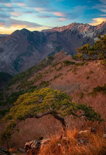 Magical colors on the end of the day in Paklenica national park in Croatia. My Best Photo Tree Mountain Sunset Autumn Sky Landscape Mountain Range Cloud - Sky Mountain Peak Mountain Ridge