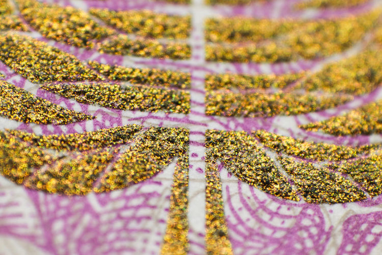 close up of paper currency Close-up Textile Selective Focus No People Full Frame Purple Flower Plant Pattern Indoors  Flowering Plant Backgrounds Multi Colored Nature Beauty In Nature Jewelry Yellow Day Pink Color Floral Pattern Embroidery Paper Currency Macro Glitter