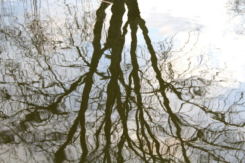 -The things that we can't see- Canon1200d Reflex Canonphotography Riflesso Travellingplanet Reflection Clouds And SkyWater Blu Threes