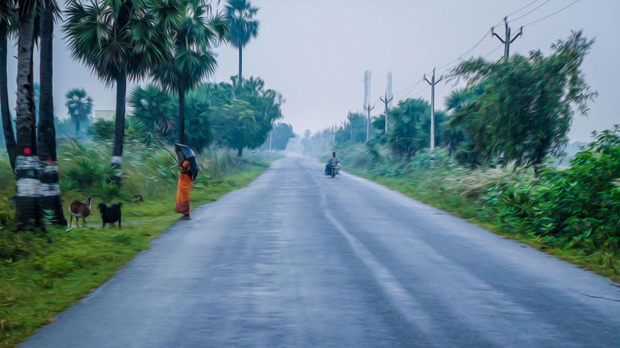 Countryside.. Candid EyeEm Best Shots EyeEmNewHere EyeEm EyeEm Nature Lover Low Angle View Colors Landscape Scenery Beauty In Nature Green Color Photography Nature Tranquility The Street Photographer - 2018 EyeEm Awards Tree City Full Length Road Women Men Street Walking Sky Treelined Empty Road vanishing point Car Point Of View Diminishing Perspective Foggy The Traveler - 2018 EyeEm Awards