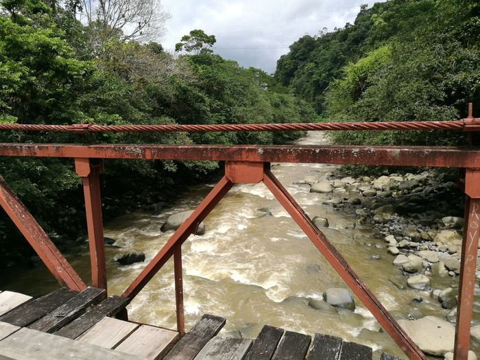 Rio Macho, Cartago - Costa Rica Outdoors Railing Day Built Structure Architecture Bridge - Man Made Structure No People Tree Low Angle View Water Footbridge Nature Sky