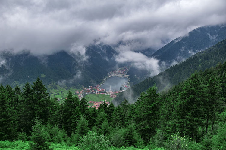 Panoramic view of trees and mountains against sky. landscape in uzungol, turkey