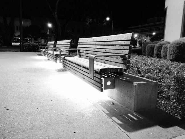 Square Palmy Bench Benches Parkbench Monochrome Blackandwhite