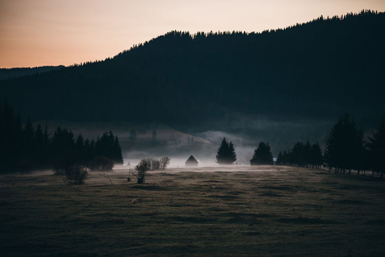 www.instagram.com/pontosanpele Field Nature Landscape No People Environment Transylvania Romania Romanian  Foggy Foggy Morning Foggy Day Foggy Weather Beautiful Sunrise Sunrise Mistycal Misty Morning Autumn Mood